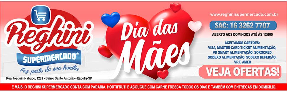 Reg Maes