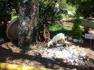 Enduro-a-pe-20-02-2011_100