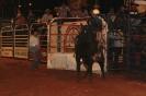07-05-11-rodeio-itapolis-as_6