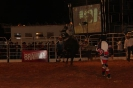 07-05-11-rodeio-itapolis-as_9