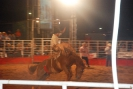 Rodeio Itapolis 2012 - DomingoJG_UPLOAD_IMAGENAME_SEPARATOR23