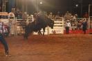 Rodeio Itapolis 2012 - DomingoJG_UPLOAD_IMAGENAME_SEPARATOR2